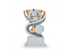 Trofej C7143 karate