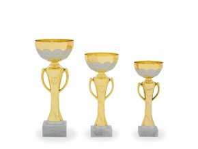Pohár C13155 zlatý/stříbrný