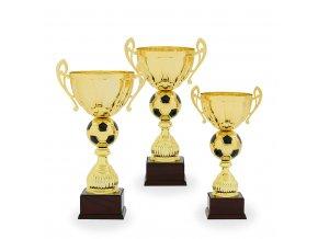 Trofej C12532 fotbal zlatá/černá