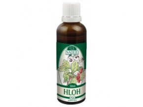 Hloh - tinktúra z púčikov P66 (Objem 50 ml)