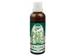 Bacopa - tinktúra z púčikov P70 (Objem 50 ml)