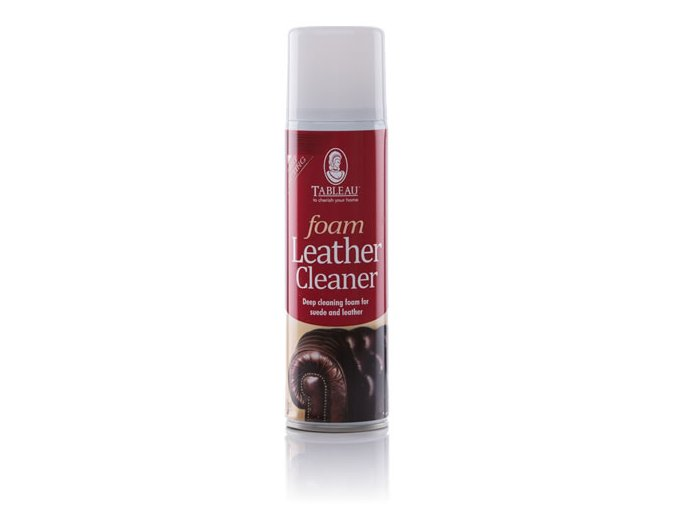 foam leather cleaner (1)