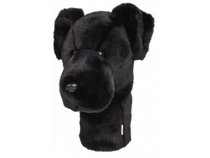 Daphnee Černý labrador