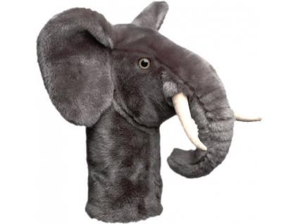 phoca thumb l Elephant