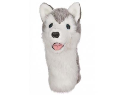 phoca thumb l Husky