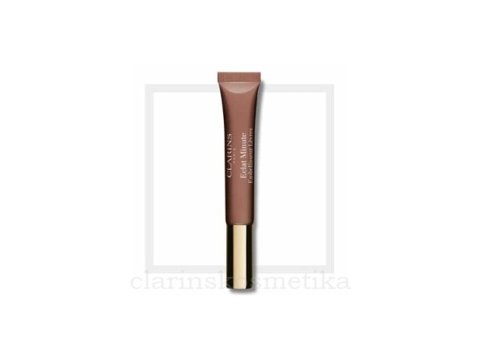 Instant Light Natural Lip Perfector 06 Rosewood