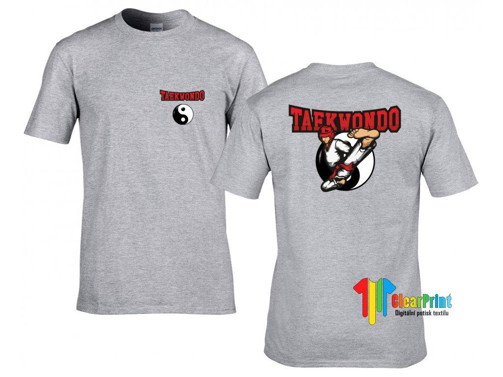 Taekwondo fight Náhled grey
