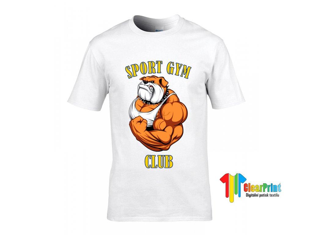 Sport gym club Náhled white