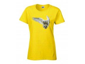 Bílá sova Náhled yellow
