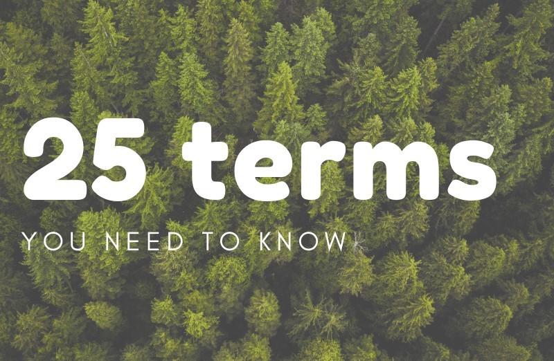 25 cannabis pojmů, které by měl každý znát
