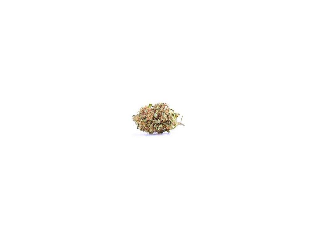 CBD Harlequin 6 % club420.cz cbd levně  nejlevnejsi cbd cbd levne levné cbd nejlevnější cbd cbd květy levně cbd šišky cbd kvety cbd květy, nejlepší CBD, nejlepsi CBD, buy cbd, cannabis, cannabis store