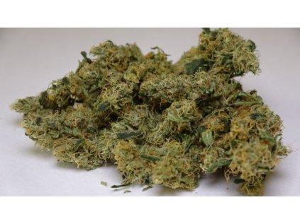 CBD Shaolin Bullet CBD 12% - club420.cz cbd levně  nejlevnejsi cbd cbd levne levné cbd nejlevnější cbd cbd květy levně cbd šišky cbd kvety cbd květy, nejlepší CBD, nejlepsi CBD, buy cbd, cannabis, cannabis store