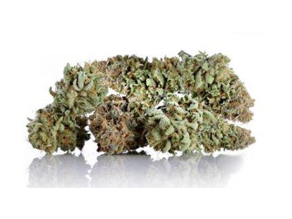 5g weed levne CBD nejlepsi cbd