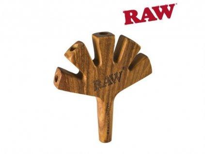 RAW Level Five