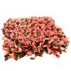 cmuchaci koberecek sedo ruzovy 1