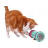 Kočka Pipolino S + 1024x768