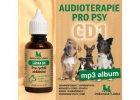 Audioterapie