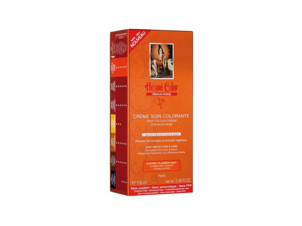 Henné Color - Barevný přeliv Nápadná Mědená Premium Végétal 100 ml