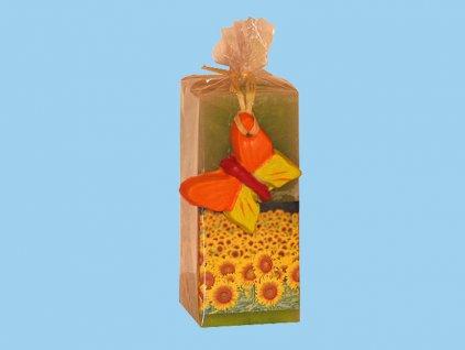 Kvádr zelený, motýl + slunečnice