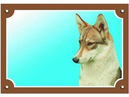 Barevná cedulka Pozor pes, Západosibiřská lajka