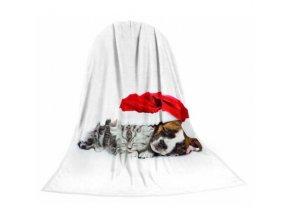 Deka TEXSTAR mikrovlákno 280g 150 x 200 cm, kotě a štěně vánoční - DOPRODEJ