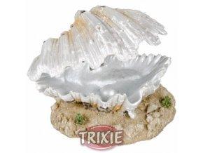 Otevřená mušle s perlou bílá 9 cm - DOPRODEJ