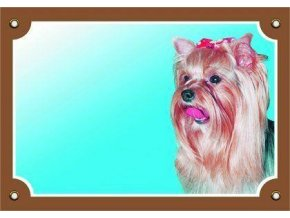 Barevná cedulka Pozor pes, Yorkšírský terier