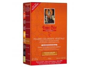Henné Color - Barva na vlasy Vznešená Kaštanová Premium Végétal 100 g