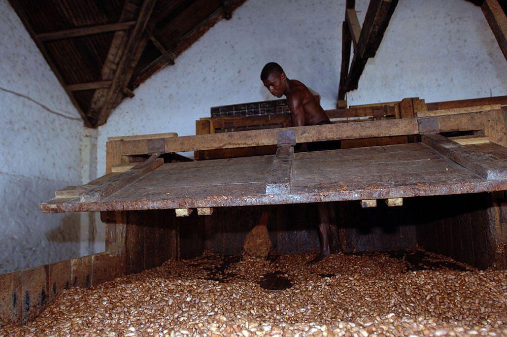 Fermentace-kakaove-boby-lopata-Francois-Pralus-Madagaskar-Cokobanka-cz-1024