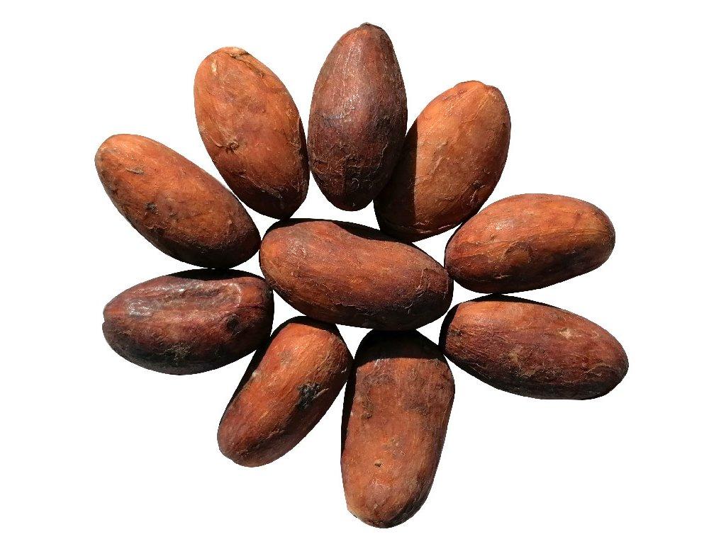 gurecky kakaove boby ekvador zatisi cokobanka cz 768
