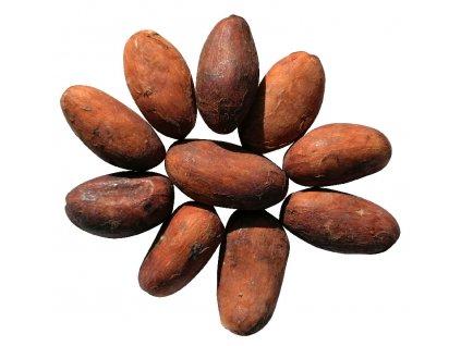 gurecky kakaove boby ekvador zatisi cokobanka cz 806
