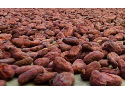boby cacao silva suseni cokobanka cz orez