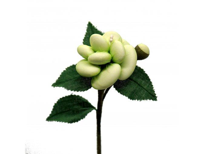 Bohatá růže