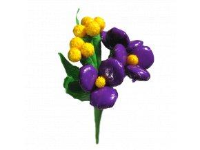 032 Violetta Mimosa kopie