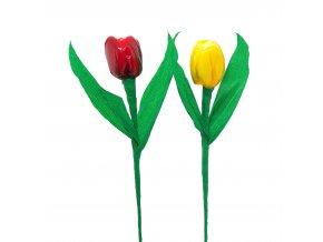 Jednoduchý tulipán