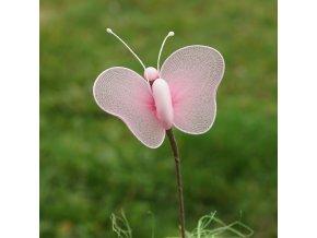 Motýl s mandlí a velkými křídly
