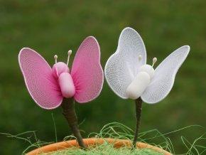 Motýlek s velkými křídly malinký