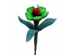 Květina s beruškou