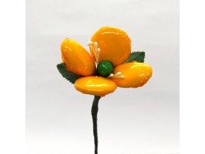 Ochutnávková květina s mandlemi i čokoládou - v celofánu