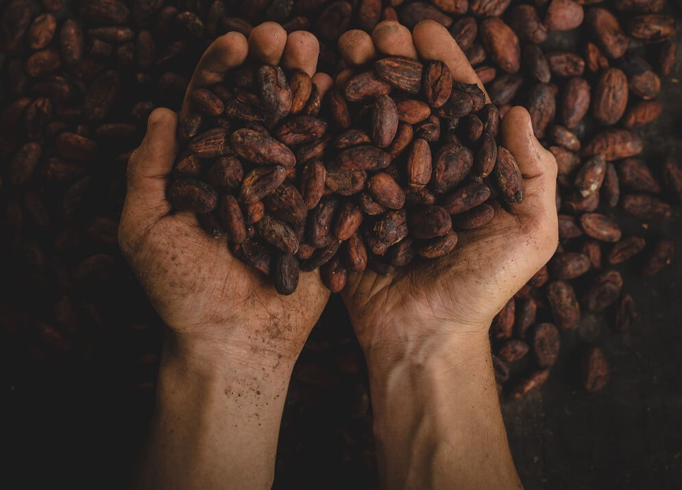 Kakaov%C3%A9%20boby
