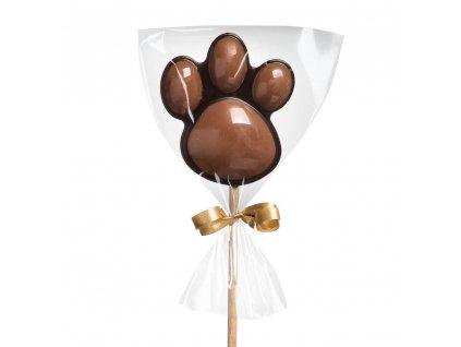 domaci cokoladove lizatko tlapka horke mlecne cokoladovna janek.jpg