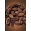 Kakaové boby pražené, neloupané - pytel Čokoládovna Troubelice