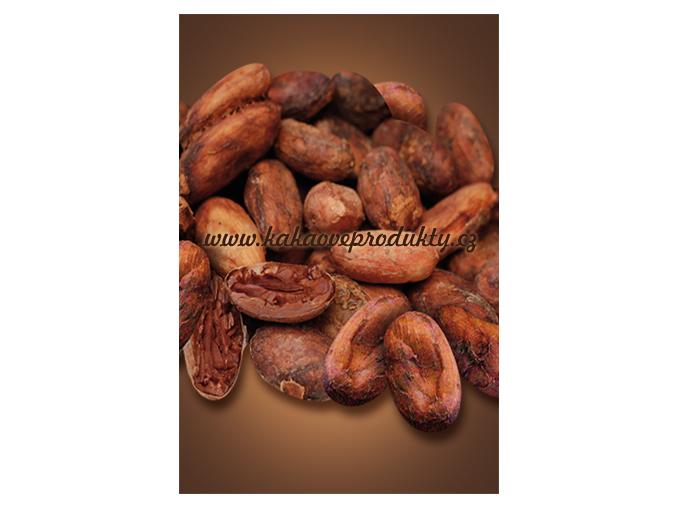 Kakaové boby BIO nepražené, neloupané - pytel, Čokoládovna Troubelice