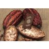 Kakaové boby BIO nepražené, neloupané, Čokoládovna Troubelice