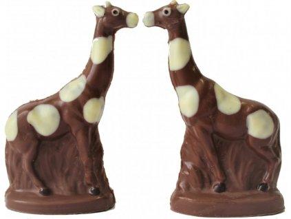 čokoládová figurka delfín 03