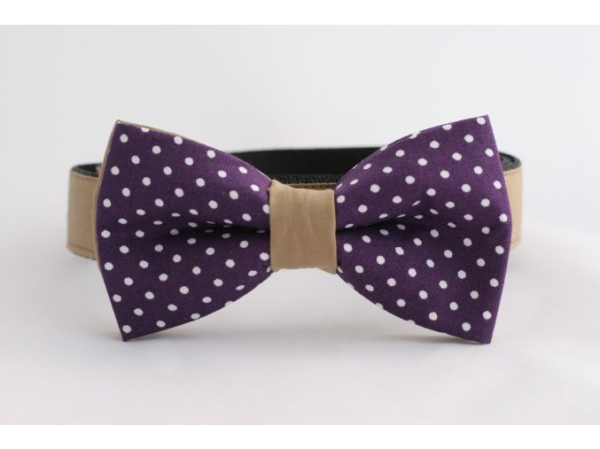 Obojek hnědý pro pejsky + fialový motýlek s puntíky