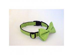 zeleny zabka 01 500x500