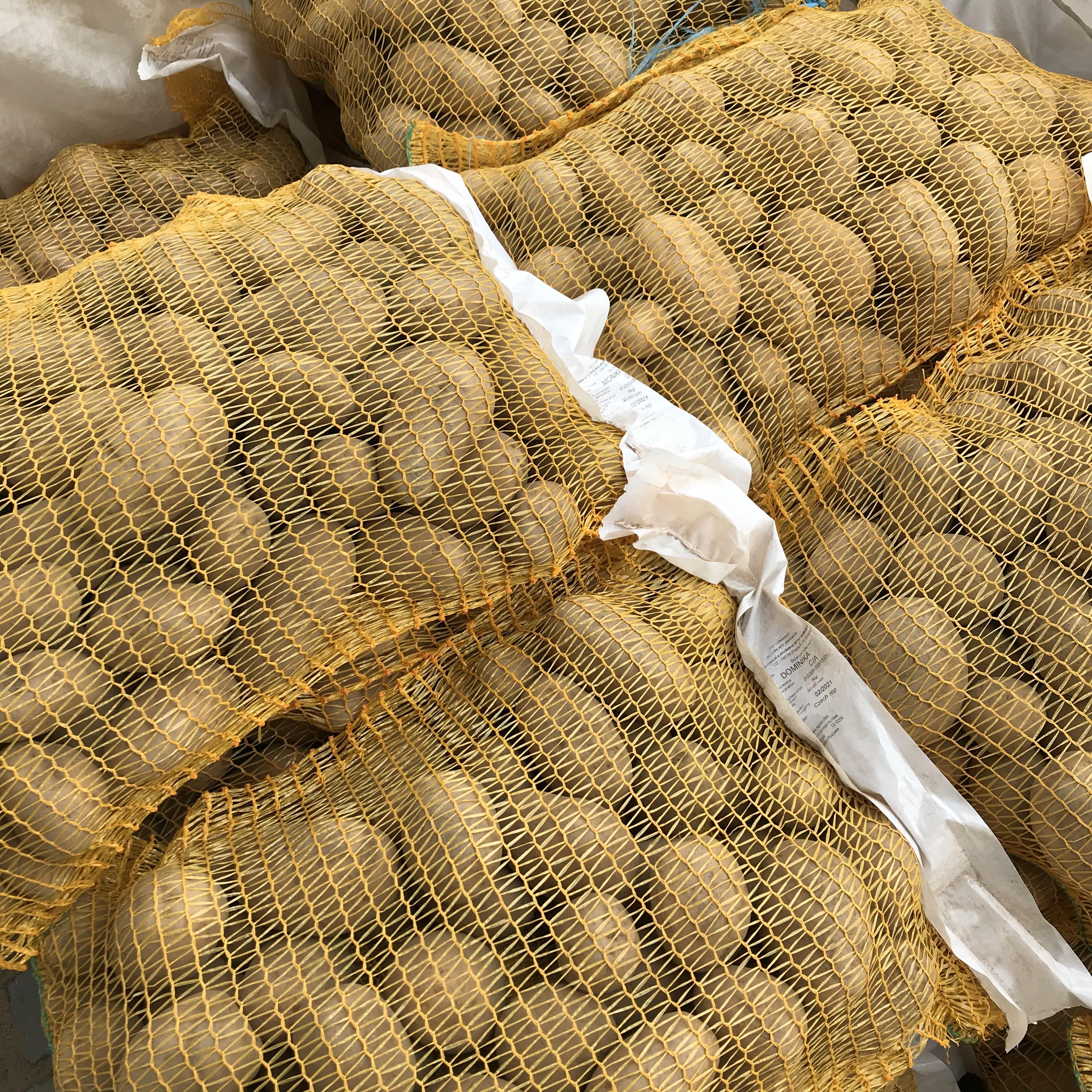 Zahájen prodej sadbových brambor