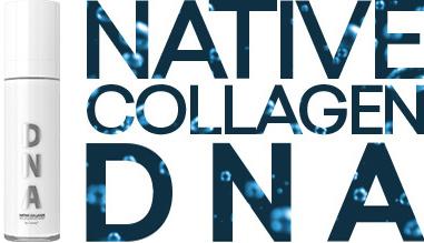 kolagen_DNA