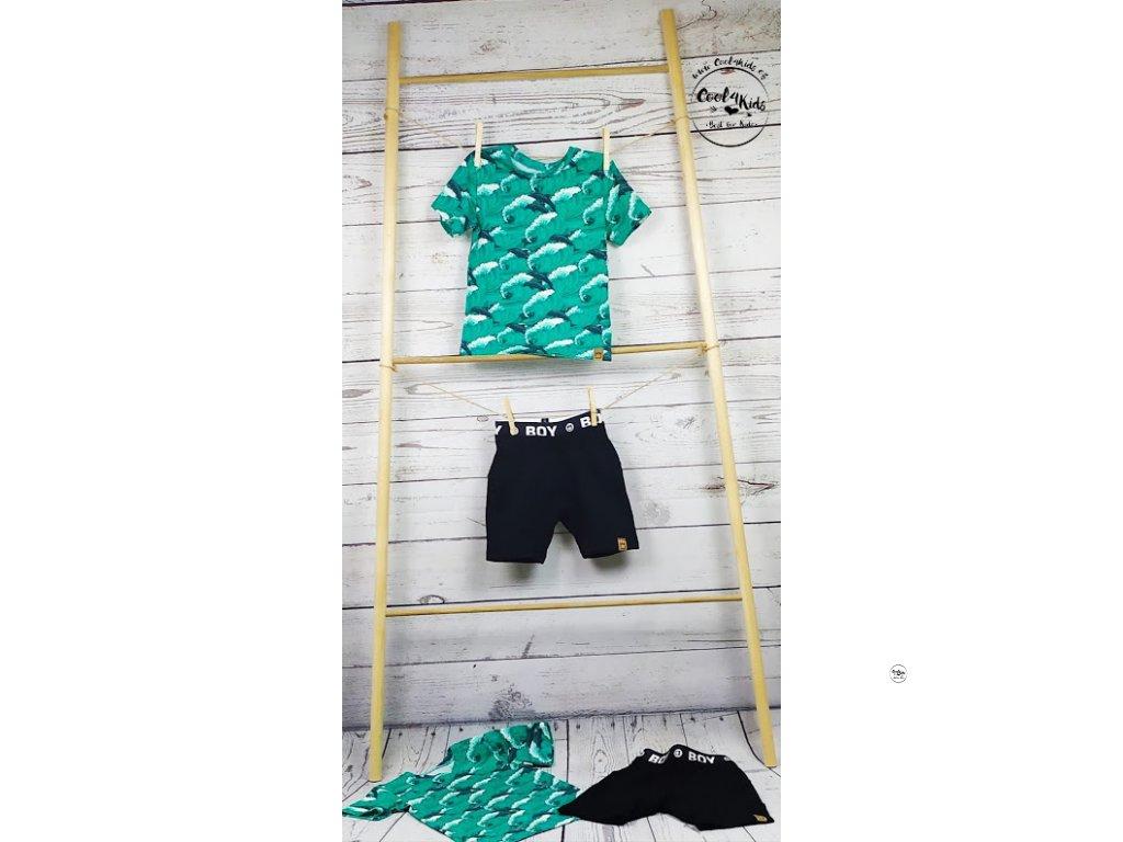 Chlapecké triko zelené s delfíny